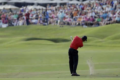 Something for the Weekend: Hit Tiger