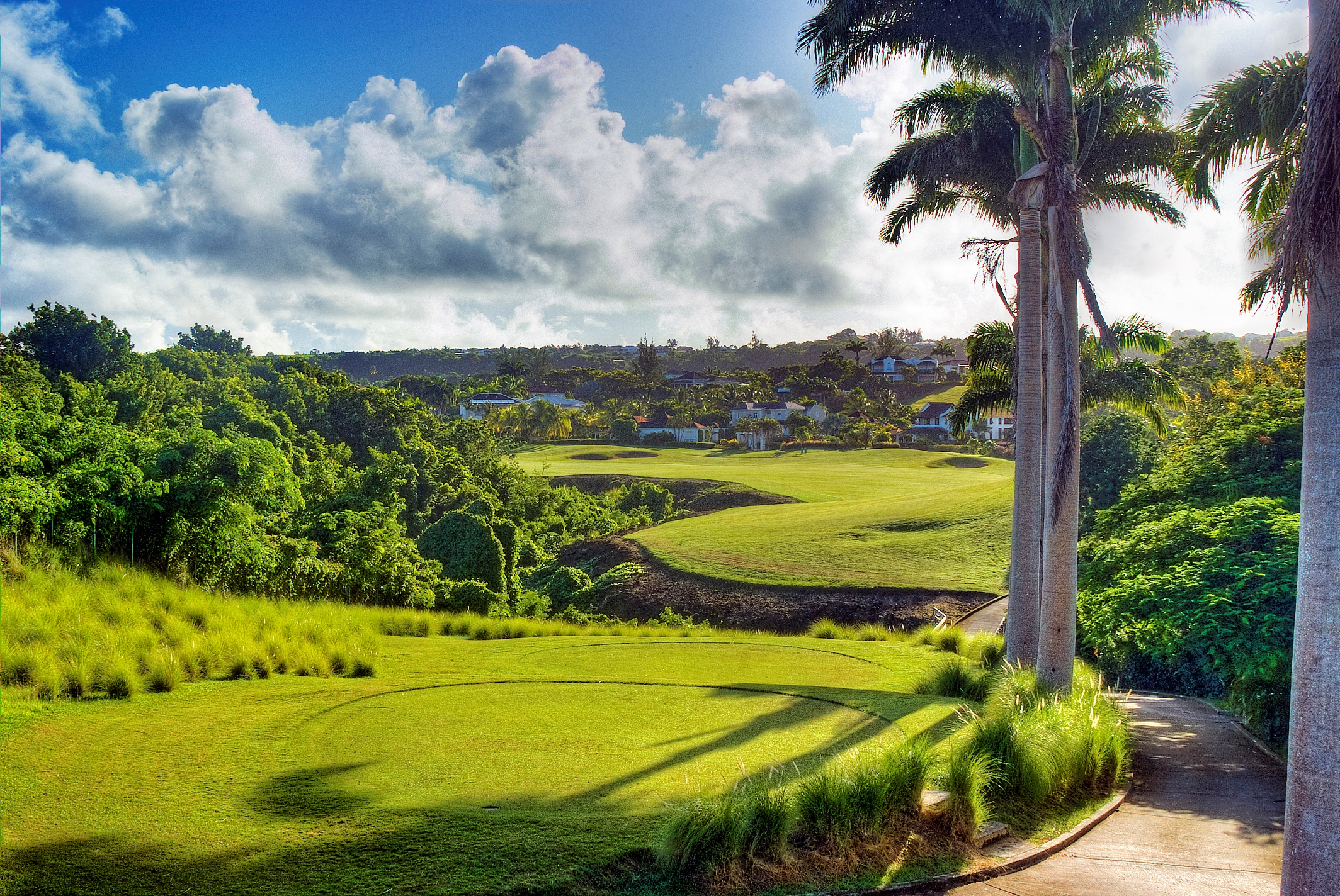 Longmuir is the director of golf at the stunning Royal Westmoreland Golf Resort in Barbados