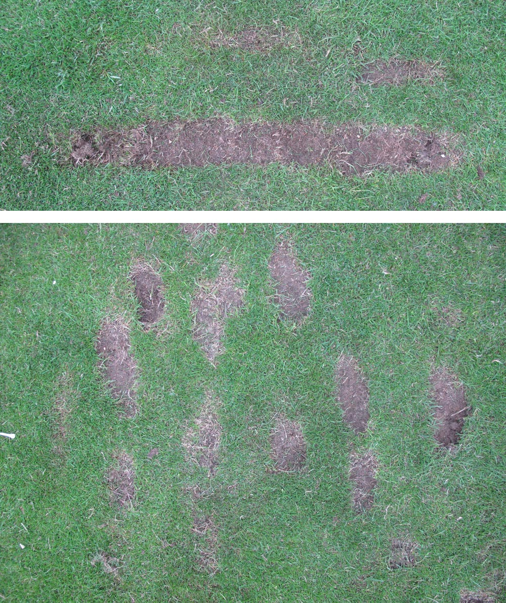 Golf Practice Drills The Perfect Divot Golfmagic