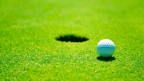 Golf's picture
