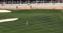 streaker goes mental at phoenix open
