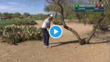 xander schauffele hits nearly the greatest golf shot in history