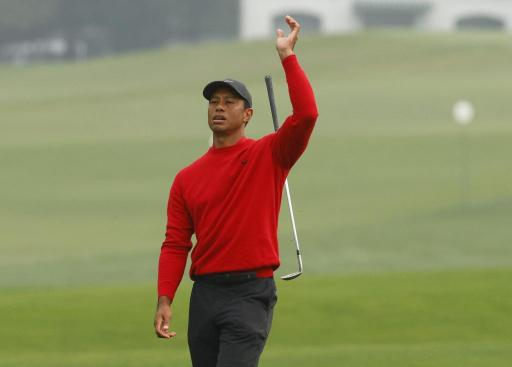 Lawyer given a ticking off after using Tiger Woods analogy in COURT