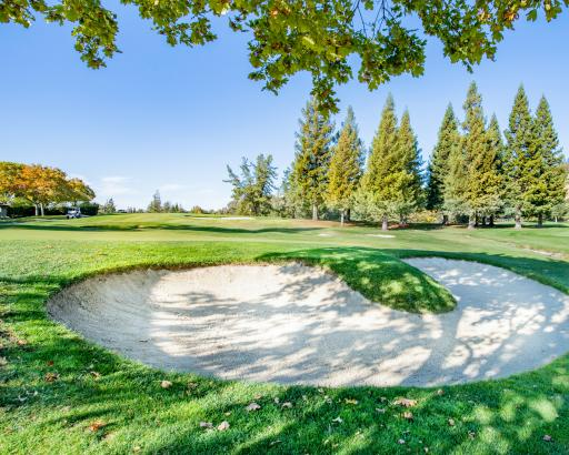 Did you know this rule about TOUCHING SAND on your backswing in a bunker?