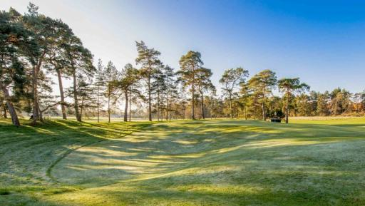 Royal Worlington & Newmarket Golf Club (Mildenhall) review
