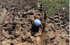 Are you allowed FREE RELIEF if your ball has landed in thick mud?